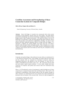 Condition Assessment and Strengthening of Shear Connection Systems for Composite Bridges