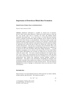 Cover of Importance of Detection of Black Rust Formation